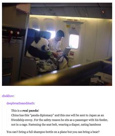 48 Times Tumblr Was Funny About Animals<--SO THEY CAN DO THIS BUT I CAN'T HAVE A PANDA AS A PET???!!! SDJHGKRG