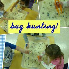bugs, rice, tweezers