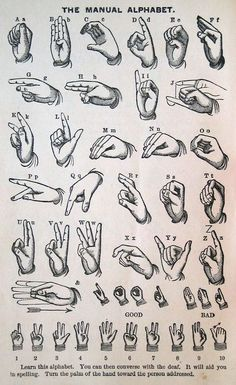 I want to re-learn ASL, I used to know a bit when I was younger manual alphabet