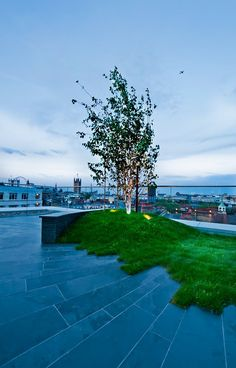 smooth square-cut stone patio has rectilinear yet irregular edge - urban roof garden in London, green roof
