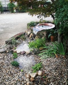 Nel mio giardino ♡ cascata a tre livelli  By Michela Zambaldo