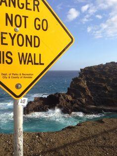 Hawaii,USA #ㄴㄷㄹㄷ