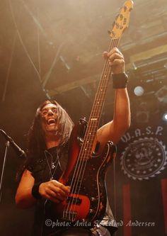 Mike Duda bass guitar wasp