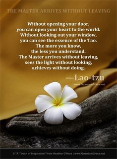 My life is not much like what my pins might lead one to think. I post things as… Lao Tzu Quotes, Zen Quotes, Rumi Quotes, Spiritual Quotes, Inspirational Quotes, Smart Quotes, Gratitude Quotes, Motivational, Life Quotes