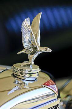 1932 Alvis 6 Speed 20 SA 4-Door Tourer Hood Ornament - Jill Reger - Photographic prints for sale