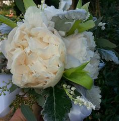 Our #bridal #bouquet from yesterday's #wedding at the #San #Ysidro #Ranch. #peonies #lily #of #the #valley #dusty #miller seeded eucalyptus  #Flower #flowers #Wedding #Florist #Santa #Barbara #CA