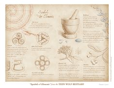 """""""Symbols & Elements"""" from the Teen Wolf Bestiary by Swann Smith. Art prints starting at US$20."""