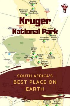 Visiting Kruger National Park Best Place On Earth The - If You Ask Us Which Is The Best National Park In South Africa Kruger National Park Is Unison Our Answer Visiting Kruger National Park Best Place On Earth Here You Find All You Need To Know For You Kruger National Park Safari, National Park Lodges, National Parks, Africa Nature, Africa Safari Lodge, Africa Destinations, Holiday Destinations, Travel Destinations, Family Road Trips