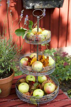 Leuk! Gebruik een etagere en vul 'm met appels voor de vogels