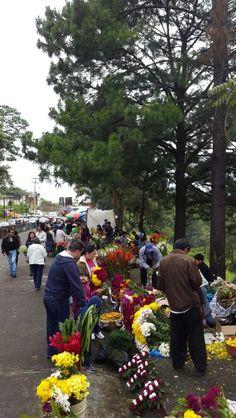 #Tradicion - Cementerio las Flores