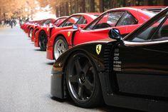 Ferrari Dreaming