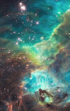 A Small Portion of the #NebulaStarCluster #NGC2074