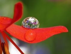 Water Drop Photography Tips | usual fall on a Flower or a drop placed by a nozzle.