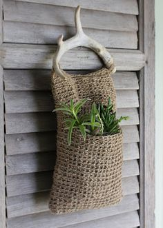 antlers + plants = plantlers?  love this idea, a pinner said that instead of a hanging planter, she wanted to use it as a purse... hmm, interesting idea. :)