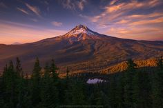 Dark Energy & Pourin' One Out by Alex Noriega