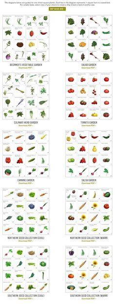 Vegetable Garden For Beginners, Veg Garden, Edible Garden, Gardening For Beginners, Gardening Tips, Vegetable Gardening, Veggie Gardens, Vegetable Design, Vegetable Ideas