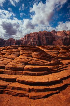 7 Best Snow Canyon State Park images in 2018 | Snow canyon