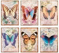 Risultati immagini per butterfly vintage