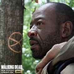 """Morgan returns !  S5 E1 """"No Sanctuary"""" 10-12-14"""