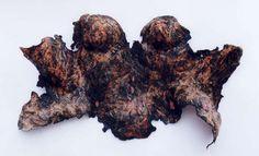 charred bark corset by Jenny dutton