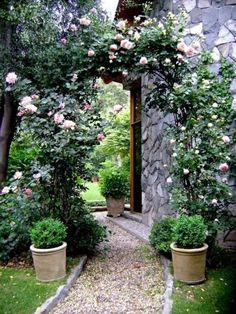 Kieselweg Keramik Gefässe weiße Rosen Pergola Garten
