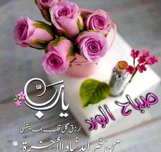 Good Morning Gif, Good Morning Greetings, Islamic Images, Romantic Love Quotes, Blog, Feelings, Flowers, Jasmin, Photos