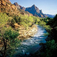 Top wow spots of Zion: Experience the majestic beauty of Zion National Park and explore its countless hidden canyons and passages
