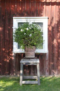 The House That Lars Built.: Gunillaberg part 3