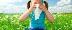 ALLERGIE A POLLONI E GRAMINACEE. Con l'arrivo della primavera, per molte persone, arrivano anche tanti problemi dovuti alle allergie. Naso chiuso, starnuti, problemi respiratori, stanchezza… tutti sintomi da allergia ai pollini e alle graminacee. Il dottor Mozzi ci spiega che, anche i problemi di allergia, si possono risolvere con un alimentazione corretta, eliminando la causa che li ha generati.