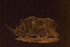 """#Rhinocéros réprésenté sur la 4e de couverture d'un ouvrage de 1856 intitulé """"Lake Ngami or, Explorations and discoveries, during four years wanderings in the wilds of south western Africa"""" #reliure #pachyderme #numelyo #bestiaire"""