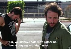 Charlie Day - It's Always Sunny in Philadelphia Charlie Day, Charlie Kelly Quotes, Half Elf, Cat Wedding, Funny Memes, Hilarious, Sunny In Philadelphia, Thing 1, Intp