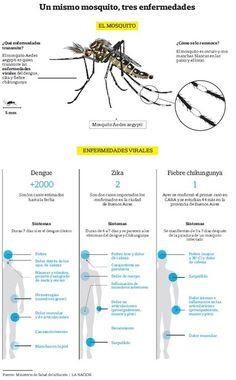 Dengue, zika y chikungunya: cuáles son las diferencias en los síntomas  Fuente: Ministerio de Salud de la Nación/ LA NACION.
