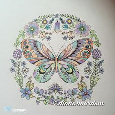 Joyousblooms Adultcoloringbook Adultcoloring Butterflies Butterfly Conte Contepencil Elerifowler