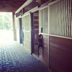 Horse stable at Hollymead Farm in Taylorsville, NC | raise Irish Draft Horses