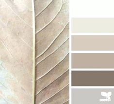 Shades of grey and taupe colour pallette, color palate, taupe color schemes, taupe Room Color Schemes, Paint Schemes, Taupe Color Schemes, Taupe Colour, Taupe Paint Colors, Beige Paint, Neutral Colors, Taupe Color Palettes, Design Seeds