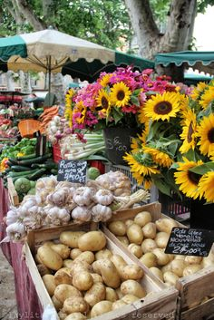 Aix-en-Provence Farmers' Market   Sunflowers vertical above produce use of yellow....very eye appealling
