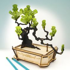 flat packed pine bonsai tree kit by pack & tickle | notonthehighstreet.com