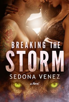 Breaking the Storm Cover Reveal