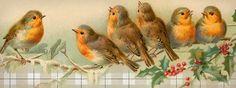 Free Vintage Birdies Facebook Cover