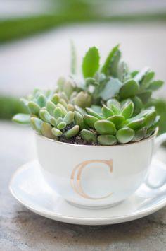 monogram teacup planter - cute gift idea!