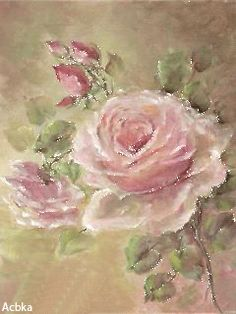 Нежнейшая  роза!