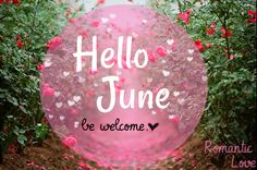 Hello June june month hello june hello june quotes
