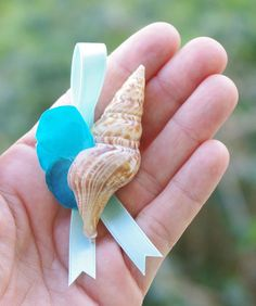 Beach Wedding Real Seashell Tropical Boutonniere   by Wedideas, $8.00