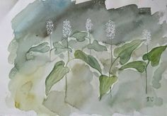 May lily  Maianthemum bifolium is a modest tiny by filmfactory Forest is my home and I love everything there, especially delicate little plants like May lily...  This watercolour of May lily is painted on Fabriano aquarelle paper with artist's quality colours.   This is a unique work of art, not a print, and can be framed...  The aquarelle measures 19 cm x 28 cm.