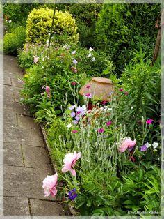 Vorfreude auf die Gartensaison im Kleingarten und Zitat im Bild