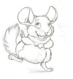 chinchilla sketch