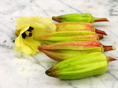 Hill Country Heirloom Red Okra: One of the best varieties we offer. The large, fat pods are very tender and full of good 'Okree' flavor that is so popular in the hill regions of the south. The pods are reddish-green in color and the plants have red stems. Very productive and high quality. This beautiful variety is very rare.