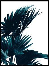Posters & Art Prints UK | Scandinavian & Nordic design | Desenio