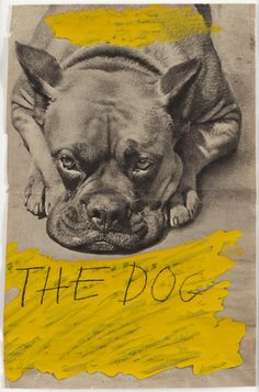 Arthur Köpcke - The Dog, 1966. Oil and pencil on printed paper.