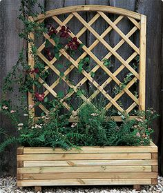 Image from http://www.buyfencingdirect.co.uk/filedepository/websites/bfd/images/trellis-planter.jpg.